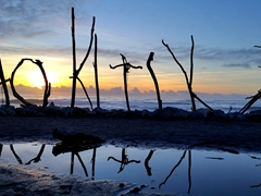 The iconic Hokitika driftwood sign at sunset