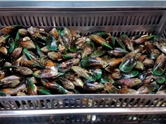 Fresh live New Zealand greenshell mussels, priced at a bargain $3 per kg