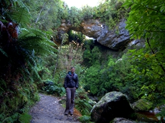 Its a short easy hike to reach Oparara Arch from the parking lot