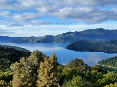 As we drive further along on the gravel road, the view gets better and better; Marlborough Sounds