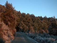 Frosty drive to Mount Robert