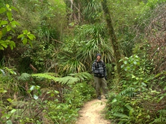 Robby enjoying our hike from Tonga Quarry to Bark Bay; Abel Tasman