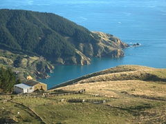 Spectacular location for a farm; Marlborough Sounds