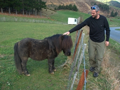 Robby petting a pony