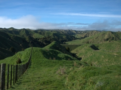 Stunning scenery on our drive through the Forgotten Highway (linking Taumarunui to Stratford)