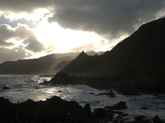 Rocky coastline near Cape Palliser