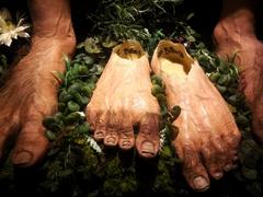 Hobbit feet; Weta Cave Museum