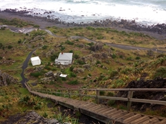 250 steps leading to Cape Palliser Lighthouse