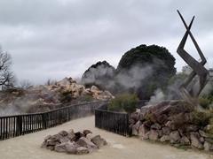 Kuirau Park, a geothermal public park in Rotorua