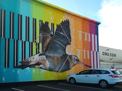 Mural of a bar-tailed godwit; Napier Port