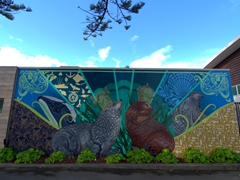 Seal mural next to Ocean Spa on Marine Parade; Napier