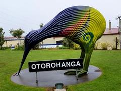 Painted kiwi; Otorohanga