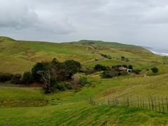 Gravel road leading to the rugged west coast; Waikato region