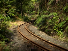 Driving Creek Railway is New Zealand's steepest railway and a must do Coromandel experience!
