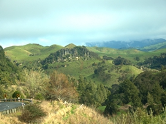 Pretty scenery on our drive through Waikato