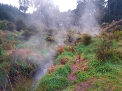 Natural geothermal hot springs at Spa Thermal Park, one of Taupo's best free activities