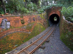 One of Driving Creek Railway's 3 tunnels