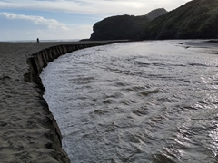 Black sand Bethells Beach