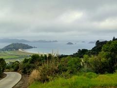 Road leading to Matauri Bay
