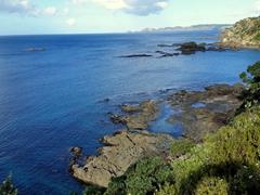 Tutakaka coastline
