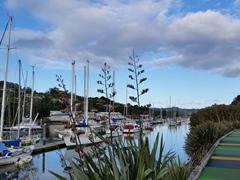 Whangarei waterfront