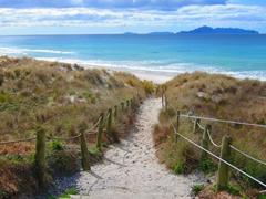 Path leading to Mangawhai beach