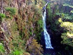 Paranui Falls