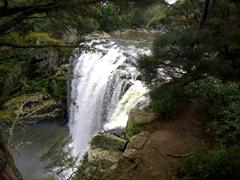 Rainbow Falls; Kerikeri