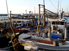 Fishing boats in Doduhang Harbor