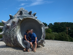 Kissing in a massive shell; Jusangjeolli