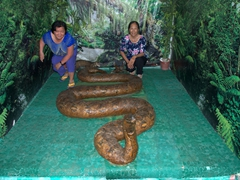 Di Tam and Di Phuong strike a pose with Prony the Python (the biggest python in captivity at 27 feet long)