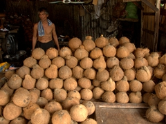 Coconut vendor; Carbon Market