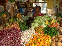 Vegetables for sale; Carbon Market