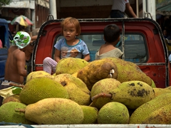 Young kids watching over jackfruit; Carbon market