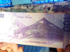 Whale shark image on a 100 PHP bill