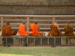 Monks praying by the Dhamek Stupa; Sarnath