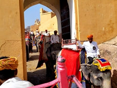 Mini traffic jam as elephants squeeze through this portal in the Amber Fort's walls
