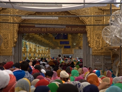 Thousands of pilgrims wait hours to enter the Golden Temple