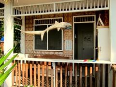 Beach shack; Malapascua Island