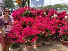 The pink scene; Ben Binh