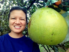 Becky next to a massive pomelo; Tân Triều Island