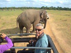 Robby gets excited to see a bull elephant stroll past us; Kaudulla National Park