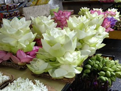 Lotus flowers for sale; Temple of the Tooth
