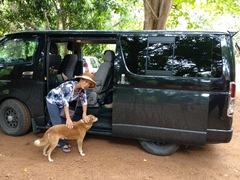Di Phuong feeds the friendly dogs at Nalanda Gedige