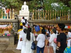 Pilgrims line up to make an offering to Buddha; Kelaniya Temple