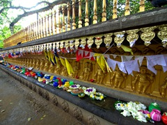 Offerings at the base of the Bo tree enclosure; Kelaniya Temple