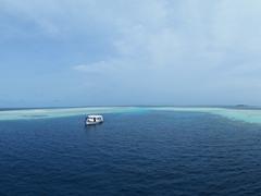 MY Sheena dive dhoni; Felidhe Atoll
