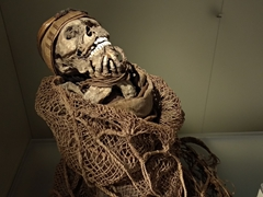 Muisca mummy on display; Gold Museum