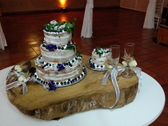 Mafe and Craig's wedding cake
