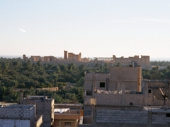 View of the ancient Roman city and oasis of Palmyra